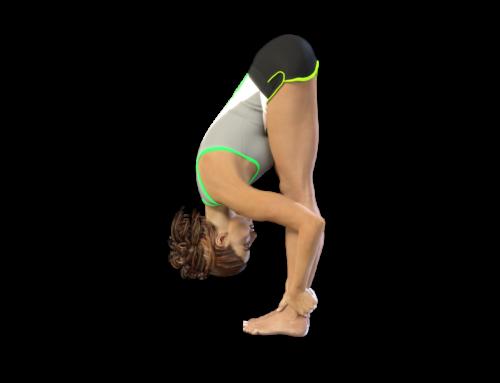 Standing Forward Bend – Complete Tutorial